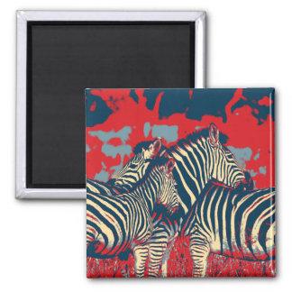 American Zebra Magnet