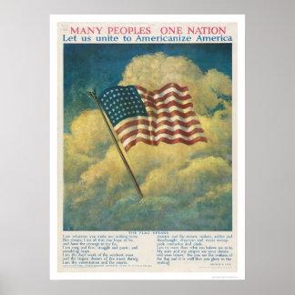 Americanize America Poster