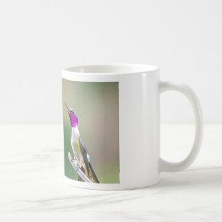 Amethyst Woodstar Hummingbird Coffee Mug