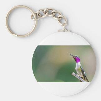 Amethyst Woodstar Hummingbird Key Ring