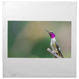 Amethyst Woodstar Hummingbird Napkin