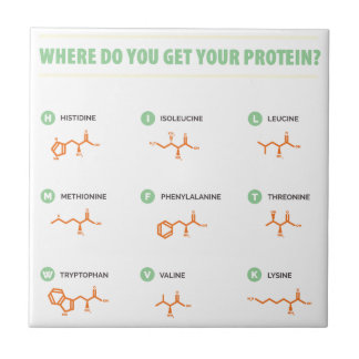 Amino Acids - Where do you get your protein? Tile