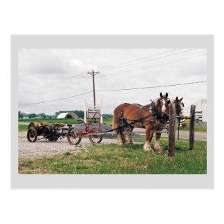 Amish Acres Produce Postcard