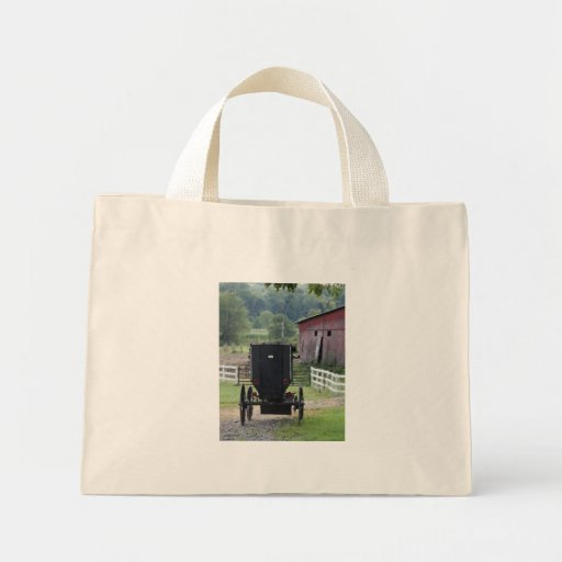 Amish Buggie - Holmes Co OH Bag