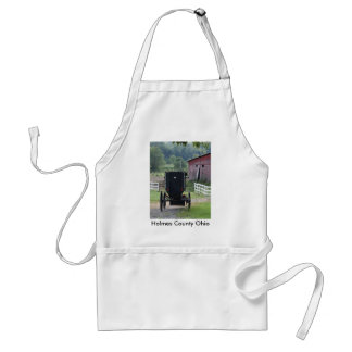 Amish Buggie - Holmes Co OH, Holmes County Ohio Adult Apron