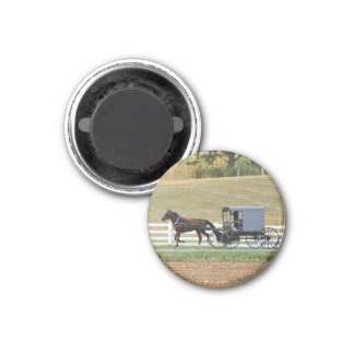 Amish buggy carriage magnet
