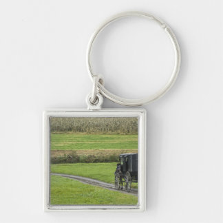 Amish buggy on farm lane, Northeastern Ohio, Silver-Colored Square Key Ring