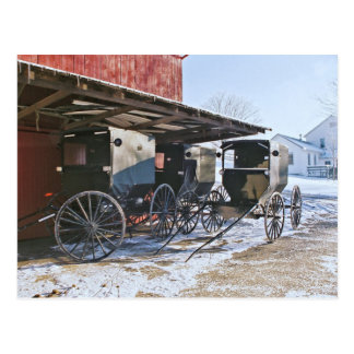 Amish Buggy Port Postcard