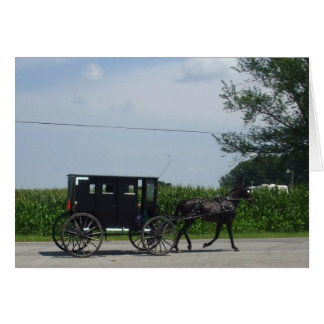 Amish buggy ride card