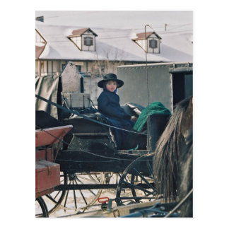 Amish Child in Buggy-Postcard Postcard
