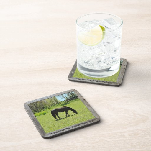 Amish Coaster! Horse in Field!