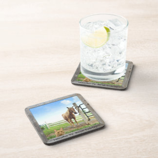 Amish Coasters, Cat and Horse!