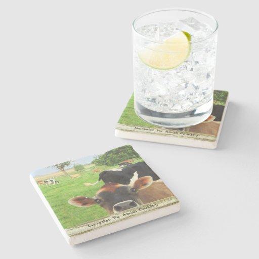 Amish Coasters, Curious Cow! Stone Coaster