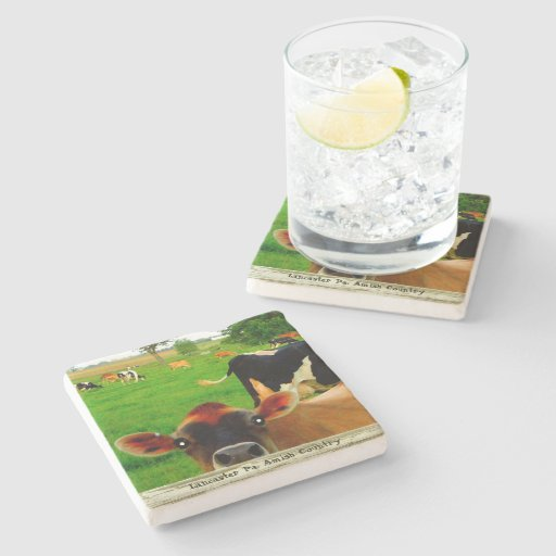 Amish Coasters, Curious Cow! Stone Beverage Coaster