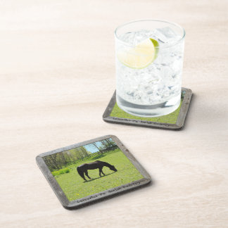 Amish Coasters! Horse in Field! Set of 6!