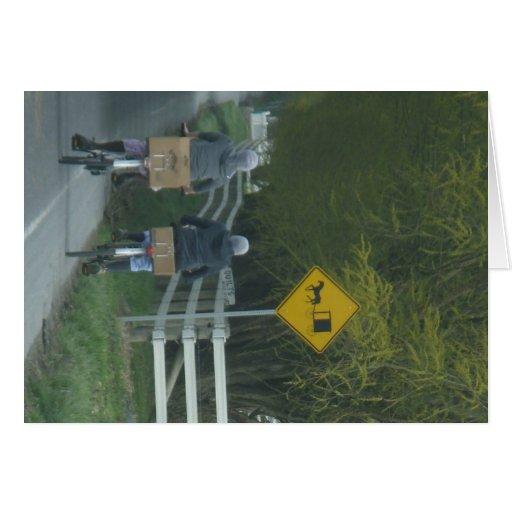 Amish Community Cards