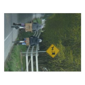 Amish Community Postcard