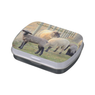 Amish Country Candy Tin! Jelly Belly Candy Tin