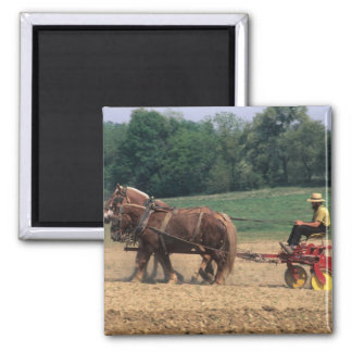 Amish Country simple people in farming with Square Magnet
