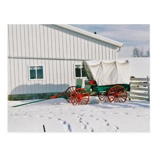 Amish Covered Wagon-Postcard Postcard