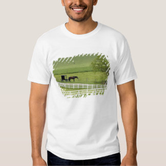 Amish farm with horse and buggy near Berlin, Shirt