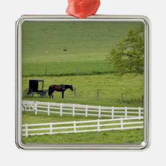 Amish farm with horse and buggy near Berlin, Silver-Colored Square Decoration