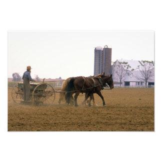 Amish farmer using a horse drawn seed planter photo print