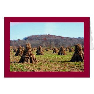 Amish Fields Card