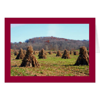 Amish Fields Greeting Card