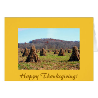 Amish Fields, Happy Thanksgiving! Greeting Card