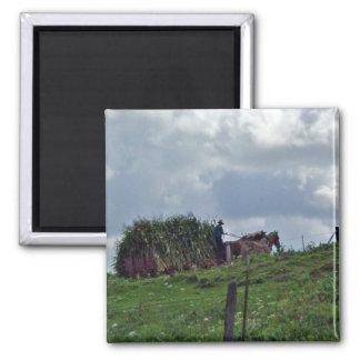 Amish Harvest Magnet