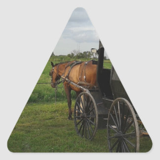 Amish Horse and Buggy at Sunset Triangle Sticker