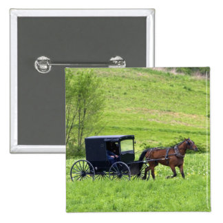 Amish horse and buggy near Berlin Ohio Button