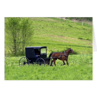 Amish horse and buggy near Berlin, Ohio. Greeting Card