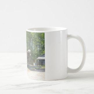 Amish Horse Coffee Mugs