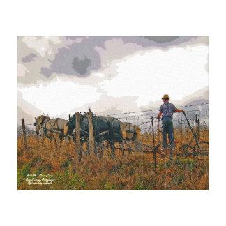 Amish Man Driving Team Canvas Print