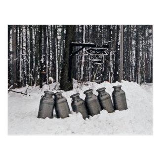Amish Milk Cans-Postcard Postcard