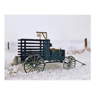 Amish Milk Wagon-Postcard Postcard