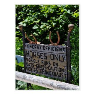 Amish Parking Postcard