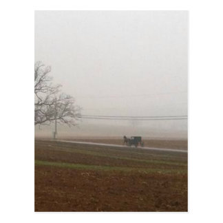 Amish Postcard