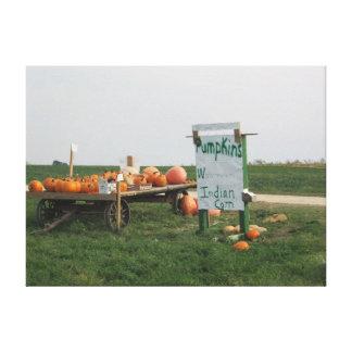 Amish Pumpkin Patch Farm Photography Wall Art