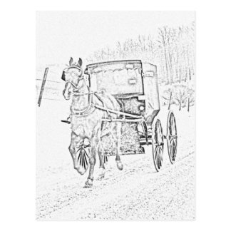 Amish Sketch-Horse and Buggy-Postcard Postcard