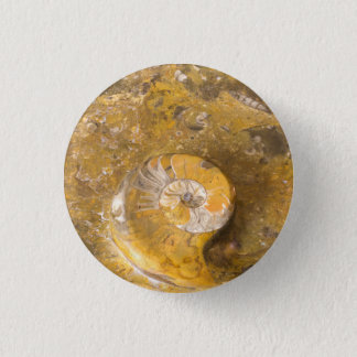 Ammonite and Other Fossils in Rock Photo 3 Cm Round Badge