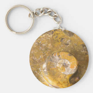 Ammonite & Other Fossils in Polished Rock Photo Key Ring