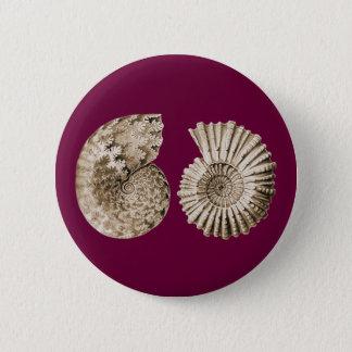 Ammonites 6 Cm Round Badge