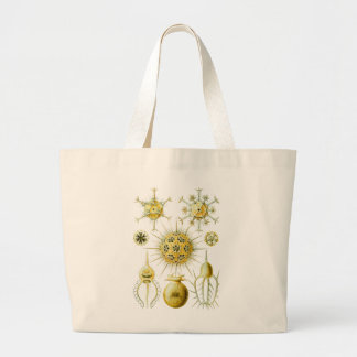 Amoeboid Protozoans Large Tote Bag