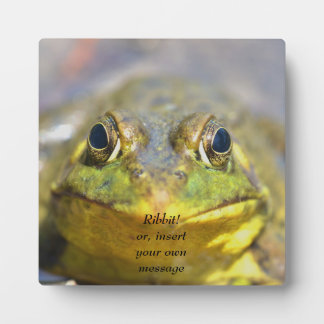 Amphibian Bullfrog greenish yellow with big eyes Display Plaque