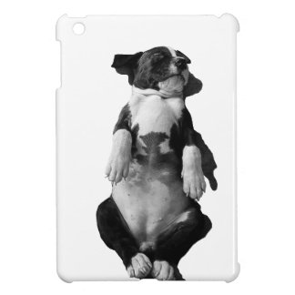 Amstaff range - Vogue iPad Mini Cases