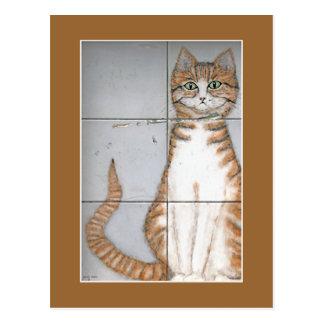 Amsterdam Cat Postcard