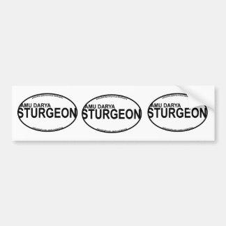 AmuDarya Sturgeon Euro Stickers